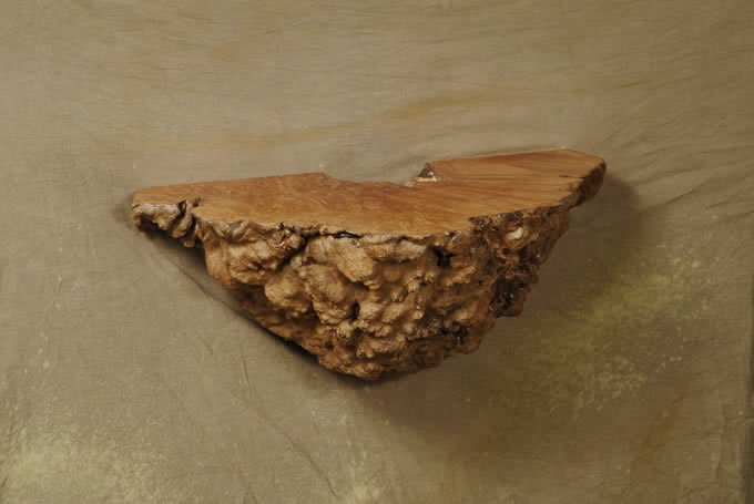 Burl Wall Hanging